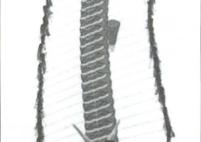 1997-Grand-Champion-Pete-Rondeau-Centipede