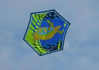 2012 People's Choice - Kite - Alexa King