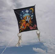 Raffle: Rock & Roll kites