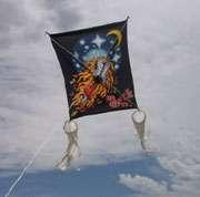 Raffle: Rock & Roll kites