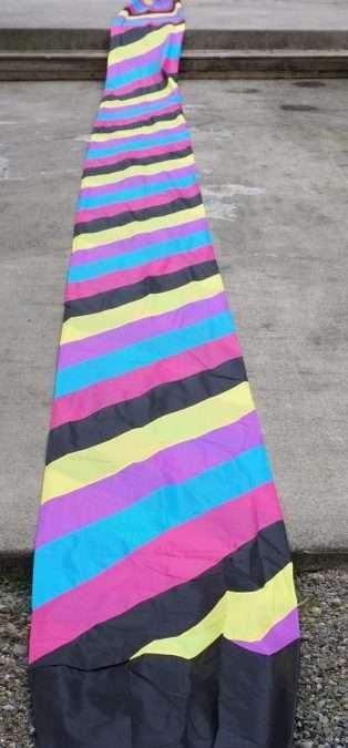 Raffle: Go Fly A Kite Wind tube and Sky Dog Spinning Box Kite