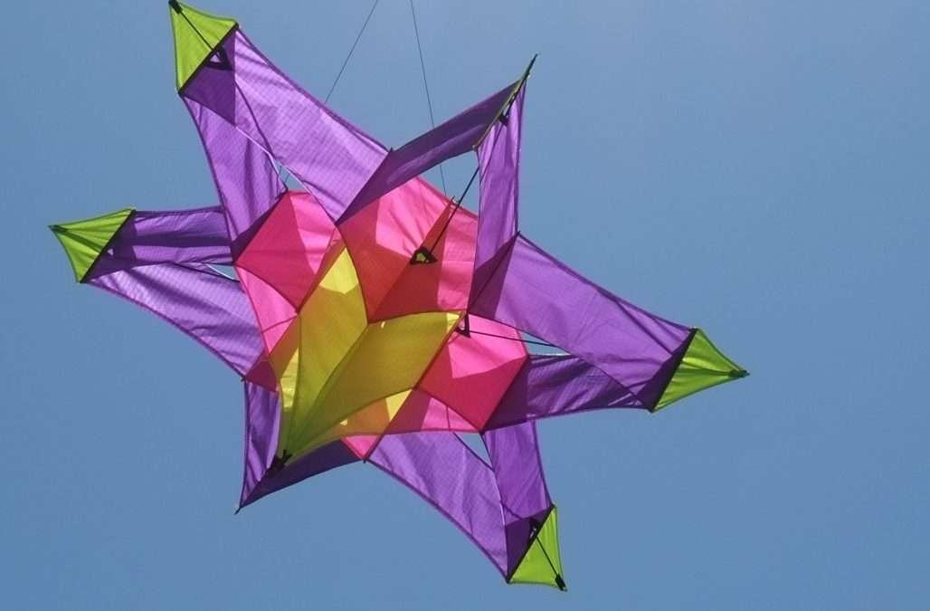 Raffle: Original Kathy Goodwind Astroid