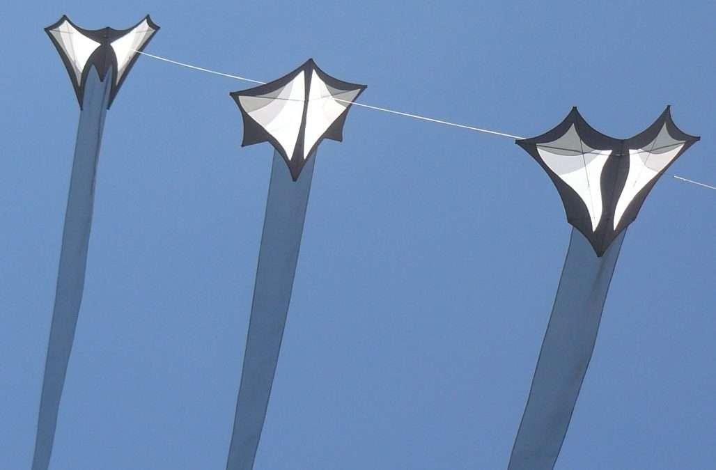 "Raffle: Robert Brasington ""Ghost"" kites"