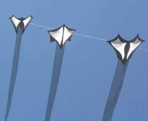 Brasington Ghost Kites