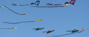 About-AKA-Kite-Flying-Bkgd