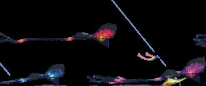 About-AKA-Kite-Flying-Frgd