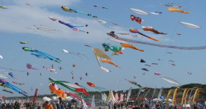 About-AKA-Kite-Flying-Our-Goals