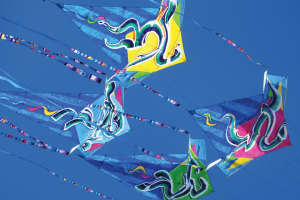 About Kites