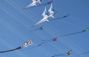 Kite flying events