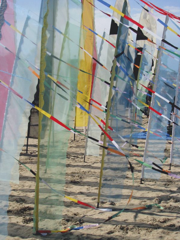 Kite-Activites