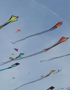 Kite-Styles