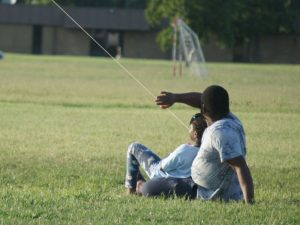 leisure-kite-2