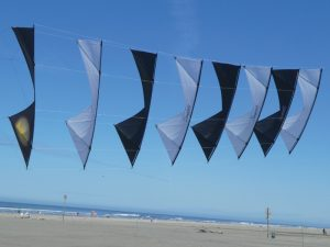 sport-kite-competitions